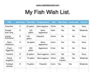 Selecting fish for your saltwater aquarium   Mad Hatter's Reef