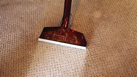scotts rug cleaners carpet cleaning scotts cleaning services