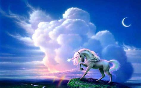unicornio fondos de pantalla unicorn wallpapers por momento unicornios fondos de pantalla momento unicornios