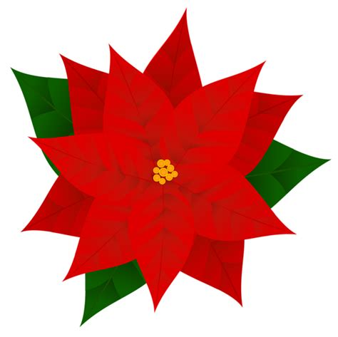 Stelan Next Flower poinsettia png clipart image gallery yopriceville high