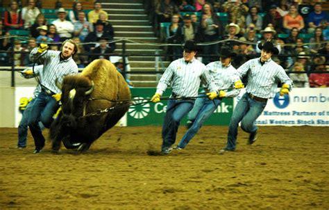 Cu Boulder Mba Health Administration by Cu At Stock Show Corrals Western Spirit Cu Denver