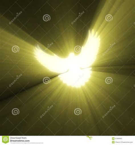 Beam Decoration Dove Bird Peaceful Light Flare Stock Illustration Image