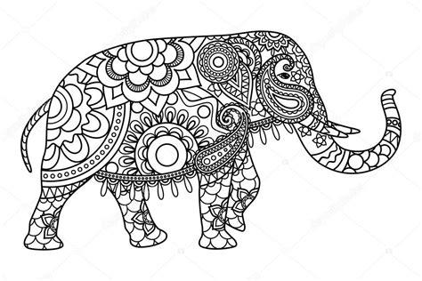 coloring pages indian elephant elefante indiano modello pagine di coloritura vettoriali