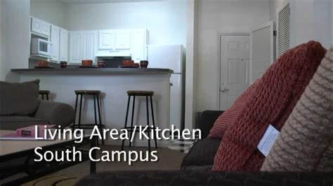 Studio And 1 Bedroom Apartments south campus 4 bedroom 2 bath youtube