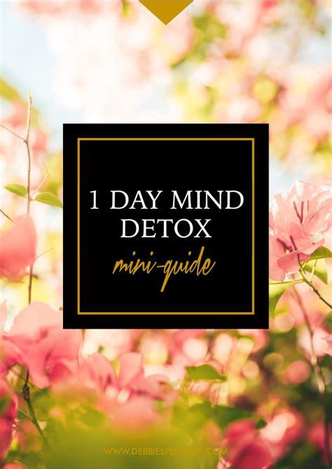 Mind Detox by Mind Detox Mini Guide