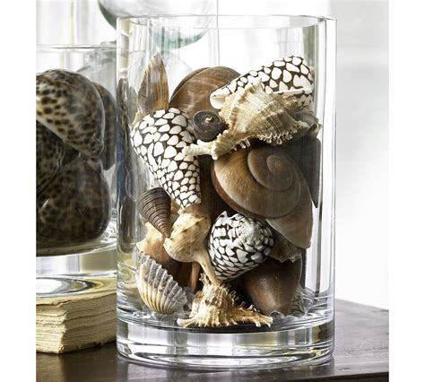 Seashell Vase Filler by Pretty Things In The Details Chic