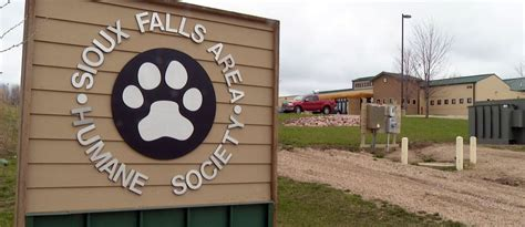 sioux falls humane society dogs sioux falls area humane society adopts new visitation policy