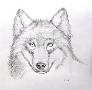 Gallery images and information simple wolf howling drawings in pencil
