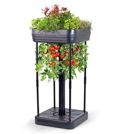 Patio Tomato Planter by Tomato Garden The Green