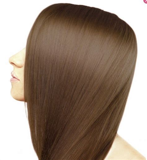 6g hair color 17 best ideas about ion color brilliance on