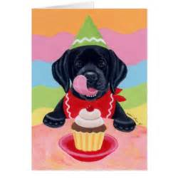happy birthday black lab pictures hairstyle gallery