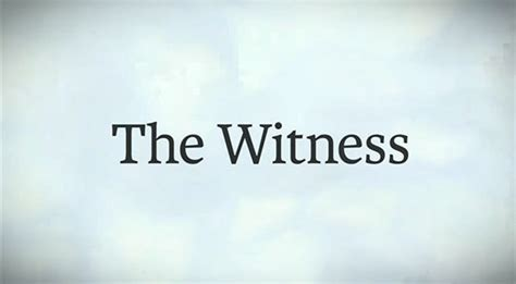 the witness ps4 walkthrough ios android guide unofficial books the witness sur playstation 4 jeuxvideo