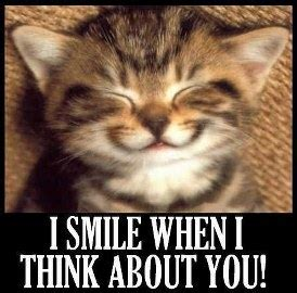 Smiling Cat Meme - smile meme face pictures