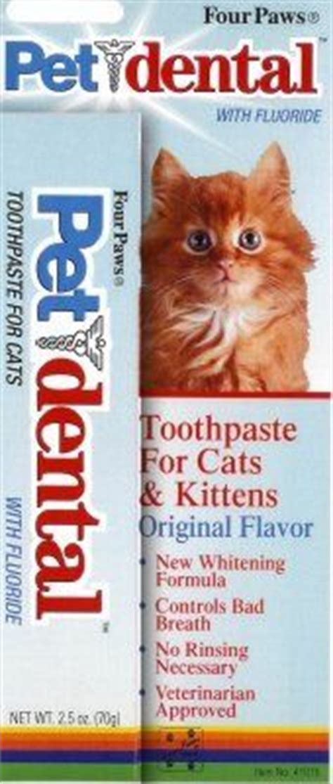 can you use human toothpaste on dogs 1000 images about cats and dogs dental care on dental dental care and