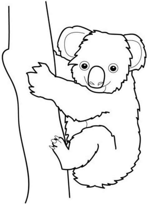 dibujos infantiles koala dibujos de koalas 187 koalapedia