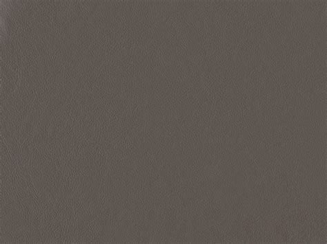 show me the color taupe name v leder taupe taupe col 206 bezugbeschreibung farbe