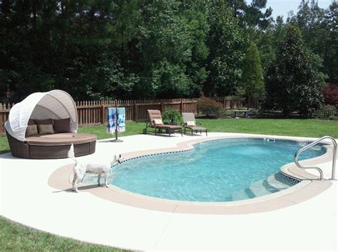 backyard leisure pools 100 best images about pool ideas on pool