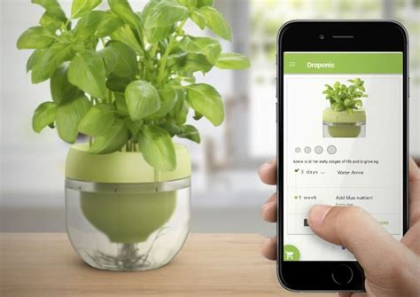 grows herbs and plants with smart herb garden in your smart indoor herb gardens plant app