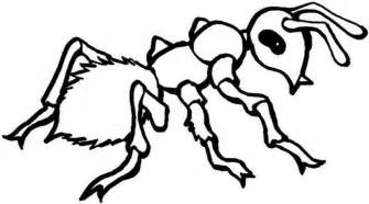 free printable ant coloring pages kids