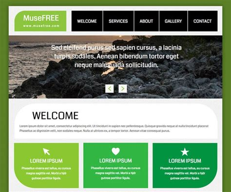 muse parallax templates 1000 images about premium muse templates on