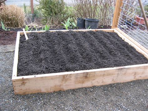 Raised Vegetable Bed by The Tacoma Kitchen Garden Journal Raised Vegetable Beds
