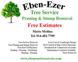 lawn care flyers templates free 4 best images of tree service flyers tree service flyer