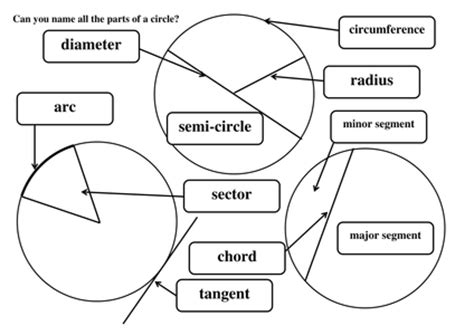 diagram of a circle labeled label parts of a circle by maths tiger uk teaching