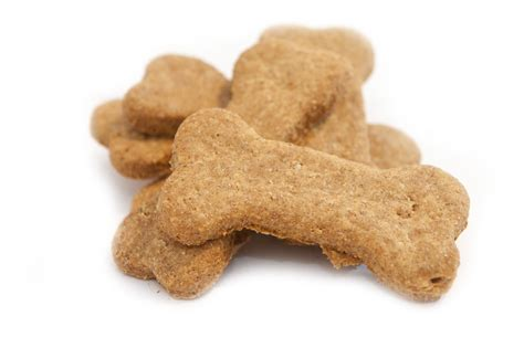 treats for puppy essentials dogfather and co canine retail and