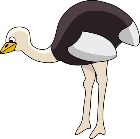 ostrich clipart ostrich clipart best