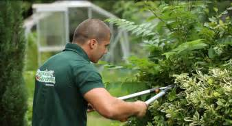 Gardening Pictures Professional Gardening Services In London Fantastic