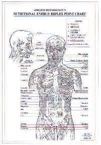 kinesiology diagram nutritional energy reflex point chart a4 touch for health