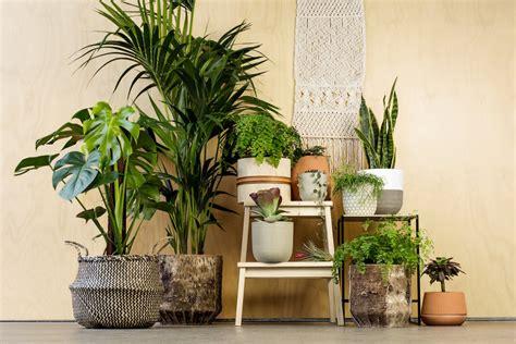 ways   artificial plants   home decor