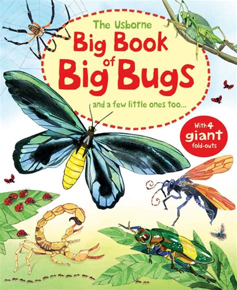 libro the usborne introduction to big book of big bugs at usborne books at home