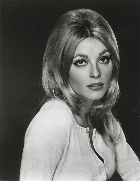 picture of sharon tate sharon tate 24 femmes per second page 3