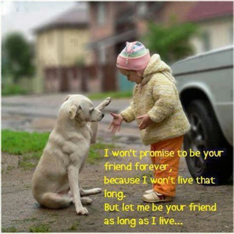 must dogs must dogs quotes quotesgram