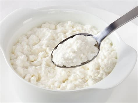 Cottage Cheese During Pregnancy by 10 Pregnancy Foods High In Proteinpregnancy Signs