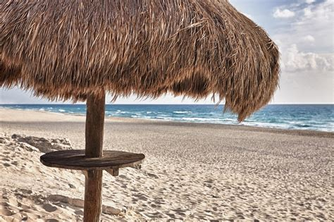 Palapa Thatch Palapa Thatch Sun Umbrella On The Photograph By