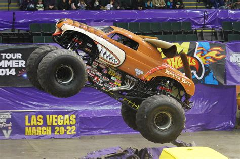 monster mutt truck videos monster jam for my monster truck loving boy run dmt