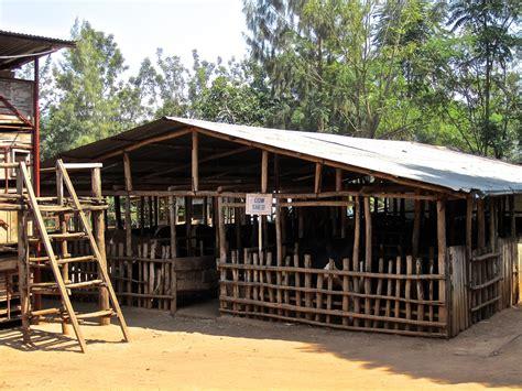Cow Sheds by Gako Organic Farming Centre Enclos Ure