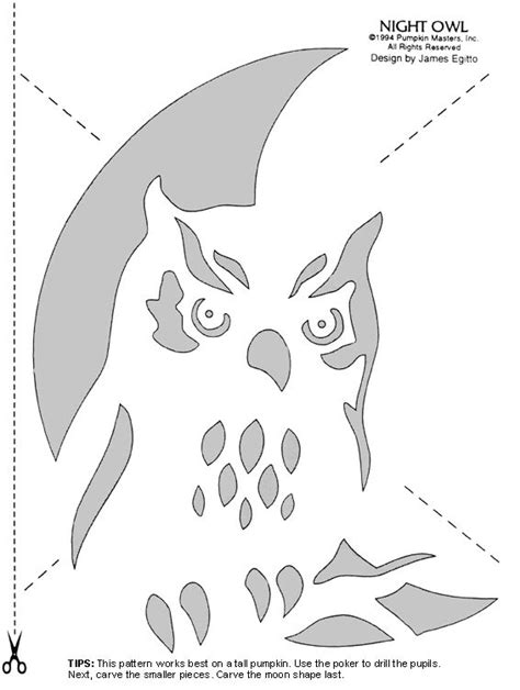 printable owl pumpkin patterns carve pumpkins into birds with these stencils pumpkin
