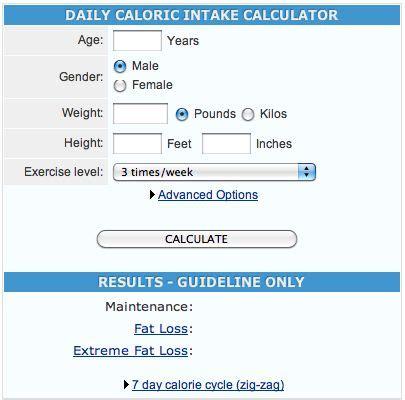 best calorie calculator best 25 calorie calculator ideas on meal
