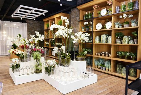 marina home interiors ahmedabad city updates marina home store launch femafest