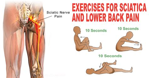 lower back stretches in bed try this 1 minute stretching routine to reduce sciatica