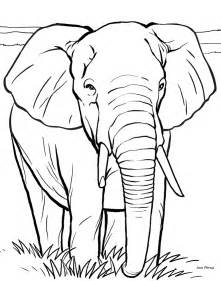 elephant coloring pages transmissionpress 14 elephant coloring pages for