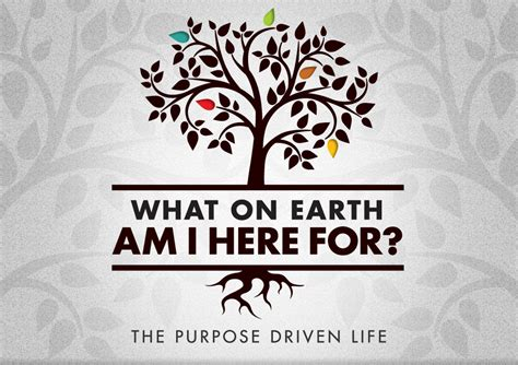 the purpose driven life purpose driven books caigns resources
