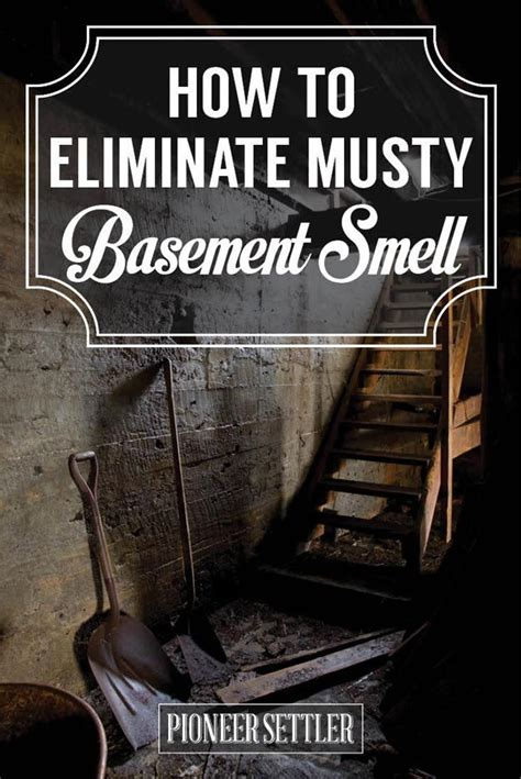 eliminate musty smell in basement home diy home