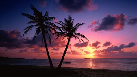 Landscape Pictures Of Sunset Beautiful Landscapes Images Cool Sunset Hd Wallpaper And