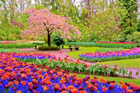 what is a spring spring wallpaper 14 8662 the wondrous pics