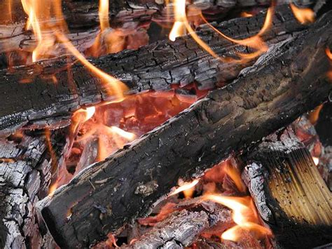 never burn pressure treated wood the laval news