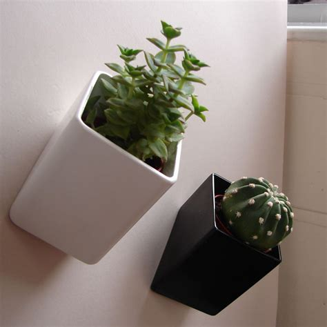 wall mounted flower pots   wall  thelermont